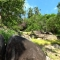 Property for sale in Samui on Laemset road near Butterfly Garden 1920 Sq me 9million